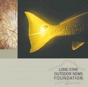 LSON Foundation Mission
