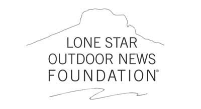 LSON Foundation Logo
