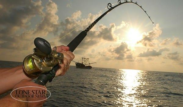 TUNA , BLACK FIN FISHING 05.Action off Pt Aransas Texas, Gulf of Mexico
