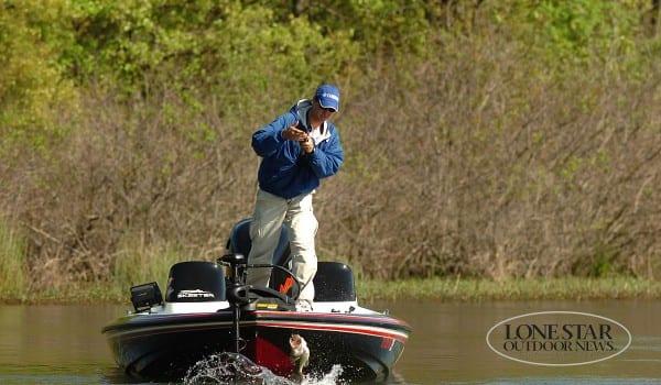 SMALLMOUTH BASS 05. fishing action  jumping bass. Table rock lake MO