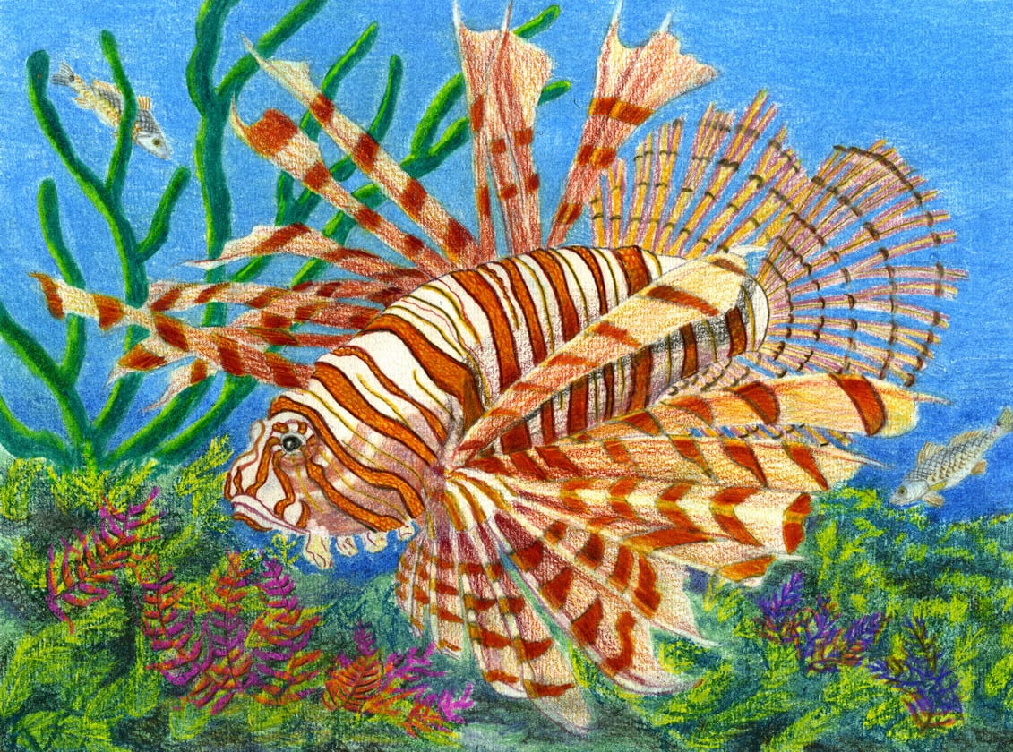 time again for texas state fish art contest texas hunting