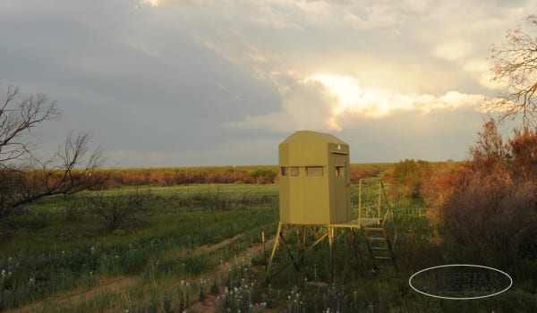 Whitetail  deer hunting blinds with thunderstorms ..Stonewall County Texas
