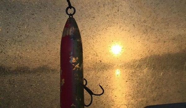 Morning mansfield texas hunting fishing lone star for Morning star fishing