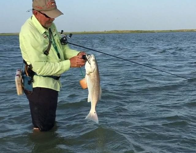 Top-water red landing with Capt. Mitch Richmond out of Get-Away-Adventures Lodge.
