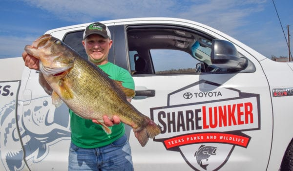 Another Huge Bass Caught From Lake Fork Texas